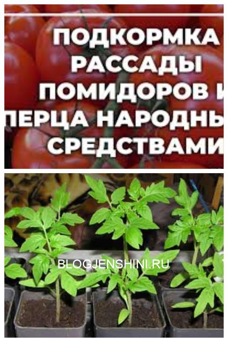 чем подкормить рассаду без химии
