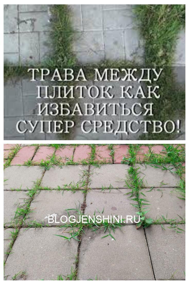 Как избавиться от травы на садовых дорожках. Обычный и эффективный способ