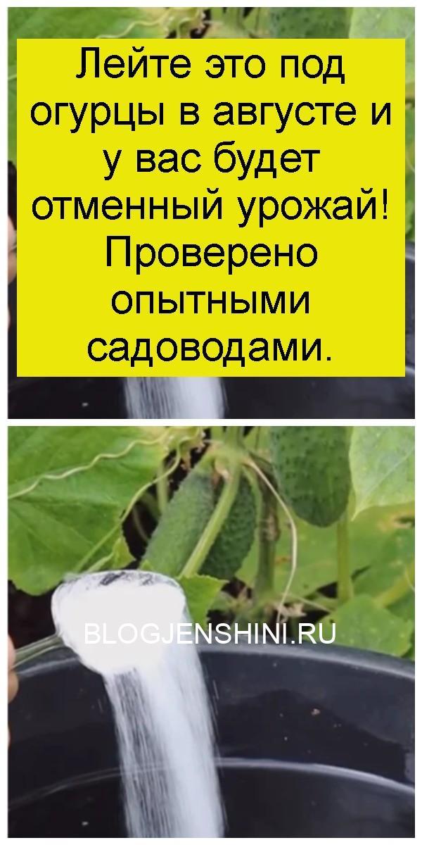 Лейте это под огурцы в августе и у вас будет отменный урожай! Проверено опытными садоводами 4