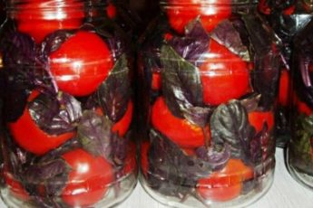 Рецепт вкуснейших маринованных помидоров с базиликом 1