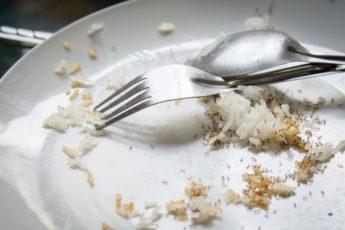 ants-eating-food-scraps-5