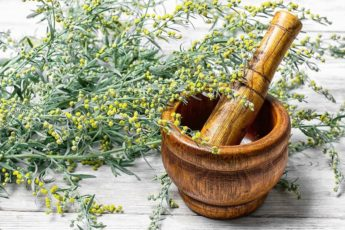 branch-of-medicinal-sage-and-mortar-with-pestle-3