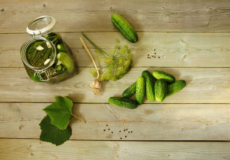 homemade-pickled-cucumbers-pickles