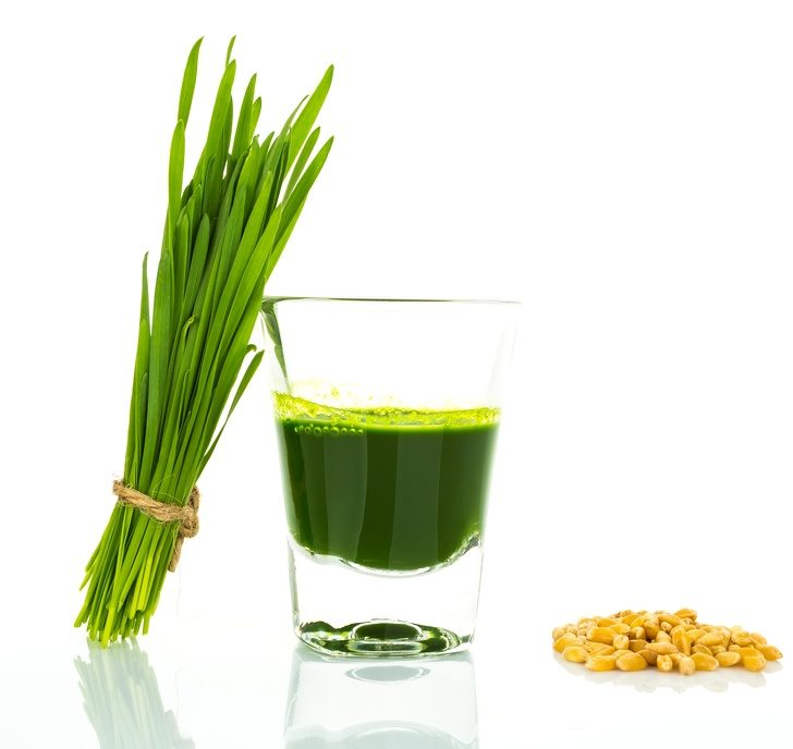 shot-glass-of-wheat-grass-with-fresh-cut-wheat-grass-and-wheat-g-3